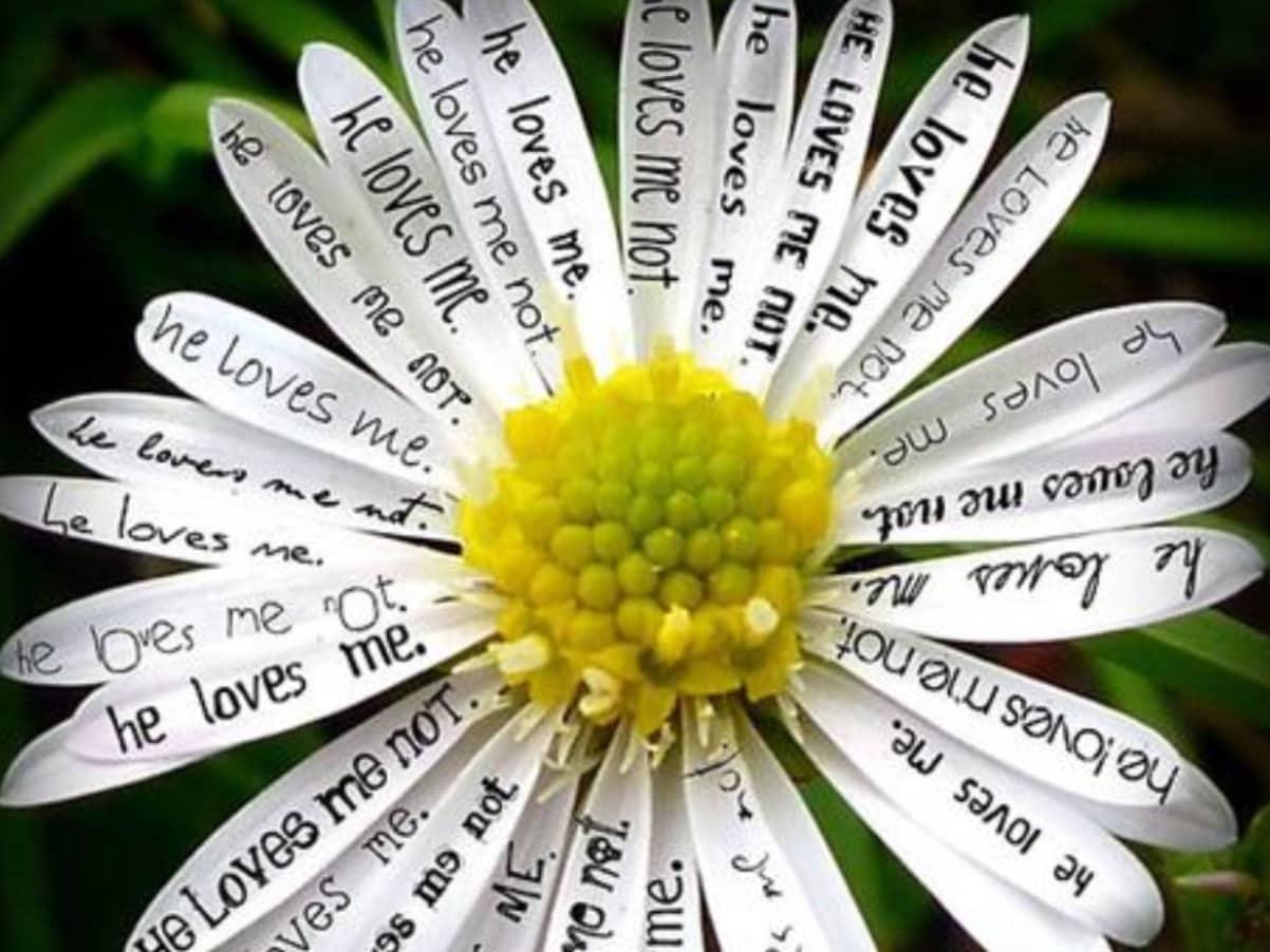 Цветок желаний сделать